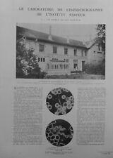 1941 I  VACCIN VACCINATION LABORATOIRE CINEMICROGRAPHIE INSTITUT PASTEUR GARCHES