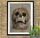 Skull in the Sand Dictionary Art Print Unique Handmade Gift Print