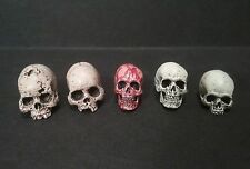 "Set Of 5 Trophy Human Skulls For 7""- 8"" Scale Neca  Mcfarlane Figures AvP Alien"
