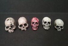 """Set Of 5 Trophy Human Skulls For 7""""- 8"""" Scale Neca  Mcfarlane Figures AvP Alien"""