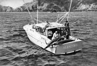 Marlin In New Zealand 1950 OLD FISHING PHOTO
