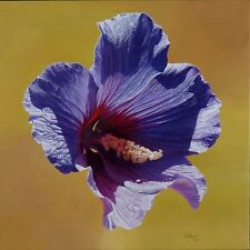 "Cuban Artist Antonio Villamil, Oil on Linen painting ""Violet Lilac"" Series 2004"