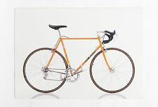 Cartolina Eddy Merckx Corsa Extra Postcard - Thames & Hudson 2015