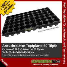 6-er Topf 1619//6 Mehrfachtopf Multitopf Pflanztopf Kulturtray Kunststoff 6 Stk