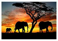 Elephant Family Sunset - Silhouette Animals Landscape Wall Art Canvas Pictures