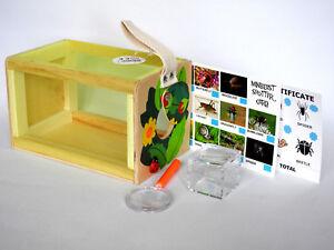 Bug Pot & Bug Carry Cage Set