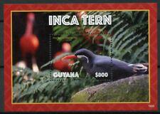 Guyana 2019 MNH Inca Tern 1v S/S Terns Birds Stamps