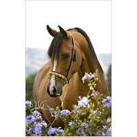 5D DIY Full Drill Diamond Painting Horse Flowers Cross Stitch Embroidery