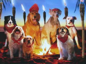 """The Tribe Has Spoken! Happy Birthday"" AVANTI FUNNY BIRTHDAY CARD Survivor Dogs"