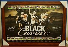 Black Caviar Signed 25 Wins Limited Edition Print Brown Frame Luke Nolen Moody