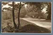 Judges, UK, Bridal Path on Hampstead Heath Vintage silver print.  Postcard Pictu