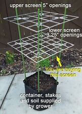 "P SCROG Screen 10-Pack - (3.25"" openings) 15% discount, compare to trellis net"