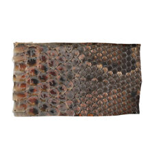 Exquisite Chinese Traditional Erhu Side Skin Snakeskin 20.5 x 12.2 x 0.1cm