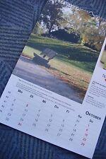 Monats Kalender  Apothekenkalender groß 2017