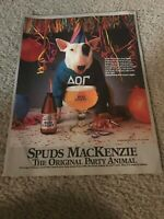 Vintage 1980s SPUDS MACKENZIE BUD LIGHT BUDWEISER Poster Print Ad PARTY ANIMAL