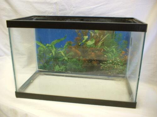 price 1 5 Gallon Fish Tank Travelbon.us