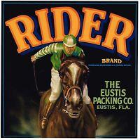 ORIGINAL CRATE LABEL FLORIDA RIDER JOCKEY VINTAGE HORSE RACING 1930S EQUESTRIAN