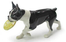 R133 - Northern Rose - Boston Terrier with Fribee