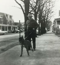 Snapshot Photograph Boxer Dog And Man Going For A Walk Down The Street