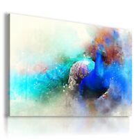 PAINTING DRAWING PEACOCK BIRDS PRINT Canvas Wall Art R52 MATAGA NO FRAME-ROLLED