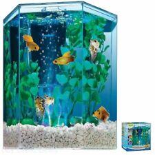 Kit de aquário