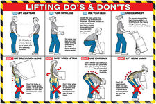 """Lifting Do's and Don'ts Poster 36"""" x 24"""" Laminated USL2_B by Algra Corporation"""