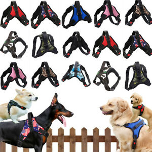 Dog Harness Collar leash No Pull Pet Adjustable Reflective Safety Puppy Vest