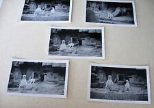 Lot 5 Original Vintage ZOO Photographs Snapshots of Polar Bears 1920s or 1930s