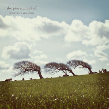 The Pineapple Thief ‎– What We Have Sown   CD NEW