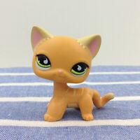 Littlest Pet Shop LPS 525 Orange Cat Green Eyes Short Hair Kitty Kids Gift Toys