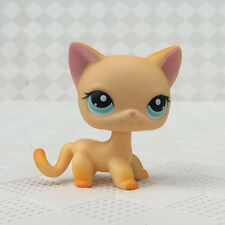 Littlest Pet Shop Animals LPS #339 Yellow Orange Short hair Cat cute Kitty Rare