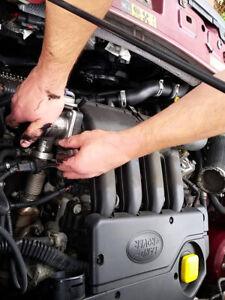 Fit Land Rover Freelander TD4 BMW EGR DㅌLㅌtㅌ Re-moval Blanking Cooler Kit