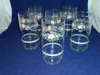 Corelle Apricot Grove Set of 6 Glasses Tumblers Drinkware Excellent