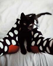 Happy Socks Damen Big Dot HSF91 Größe 36/40 / UVP 13€