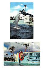 2 Vintage St Augustine Fl Postcards Marineland Marine Studios Porpoise Florida