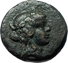 TRIPOLIS in LYDIA as APOLLONIA RARE Ancient Greek Coin DIONYSUS PANTHER i66171