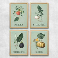 Bild Set Gemüse Kunstdruck A4 Paprika Rübe Kürbis Aubergine Küche Vintage Deko