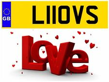 L11 OVS WIFE LOVE LOVER VALENTINES DAY LOVES WIFEY WIFES PRIVATE NUMBER PLATE KA
