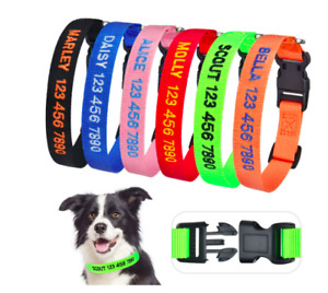 2021 Personalised Dog Collar custom name / number ID AU Seller FAST SHIPPING!