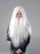 *Long White Merlin Wizard Santa Fancy Dress Wig and Beard for Halloween Costume*