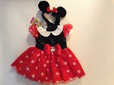 NWT Baby Girl clothes size 9 - 12 months Disney Minnie Mouse costume dress Photo