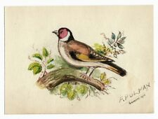 Antique 1911 NATURAL HISTORY Song Bird ORIGINAL WATERCOLOR PAINTING Ornithology