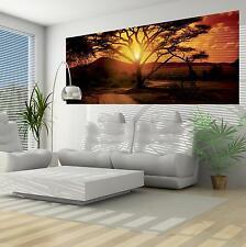 Vlies Fototapete Fototapeten Tapete Wandbild Poster Afrika Safari 3fx055vep