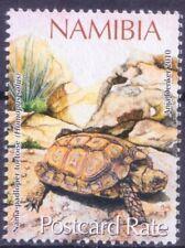 N6a- Namibia 2010 MNH, Nama Padloper, Tortise