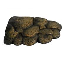 Lizard Reptile Rocks Ebay