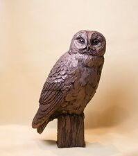 Tawny Owl - Frith Bronze - Harriet Dunn