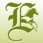 epona-horsefeed