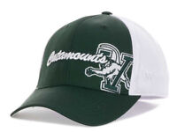 Vermont Catamounts Top of the World NCAA Trapped One Fit Flex Fit OSFM