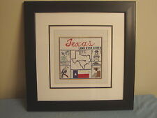 Framed Counted Cross Stitch:  State of Texas, Lone Star State,  20 x 20 in