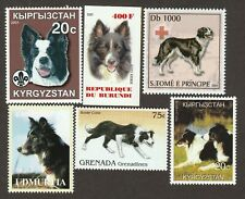 Border Collie * Int'l Dog Postage Stamp Art Collection* Great Gift Idea*